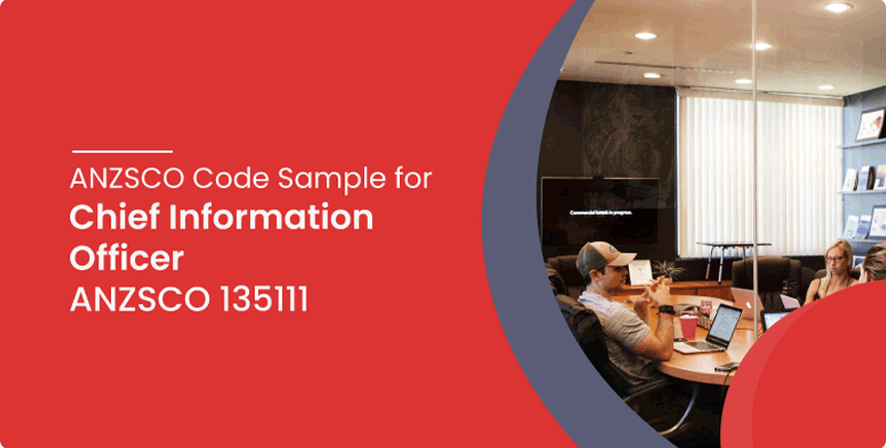 ANZSCO code sample Chief Information Officer